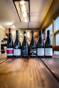 Pinot Noir kassen 2.0